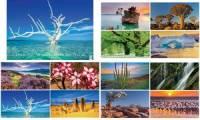 Glocken Bildkalender Wunderwerke der Natur 2018